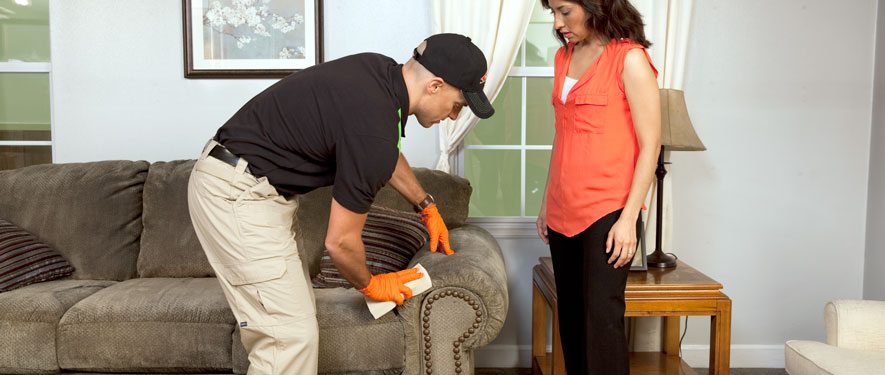 Reidsville, NC carpet upholstery cleaning